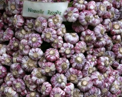 Mediterranean Garlic